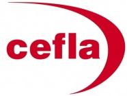 CEFLA MEDICAL SOLUTIONS